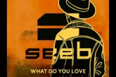 """Seeb """"What Do You Love"""" (Feat. Jacob Banks)"""