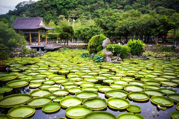 Parco Shuangxi di Taipei